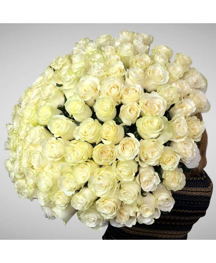 Букет № 34 из  белой розы