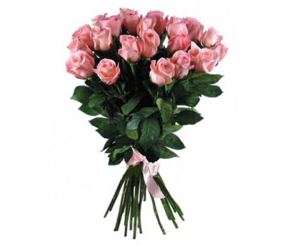 Акция- букет из 25 розовых роз!